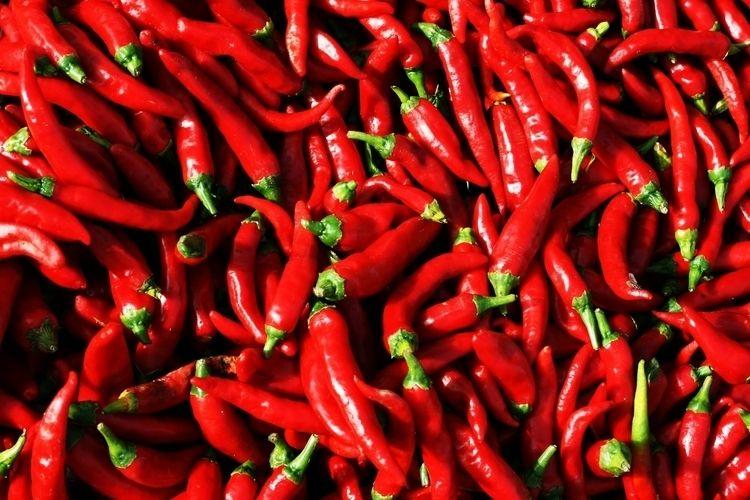 camera, red, bright, chillies - julia_azz | ello