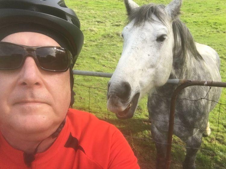 Horse telling story - bobhopkins | ello