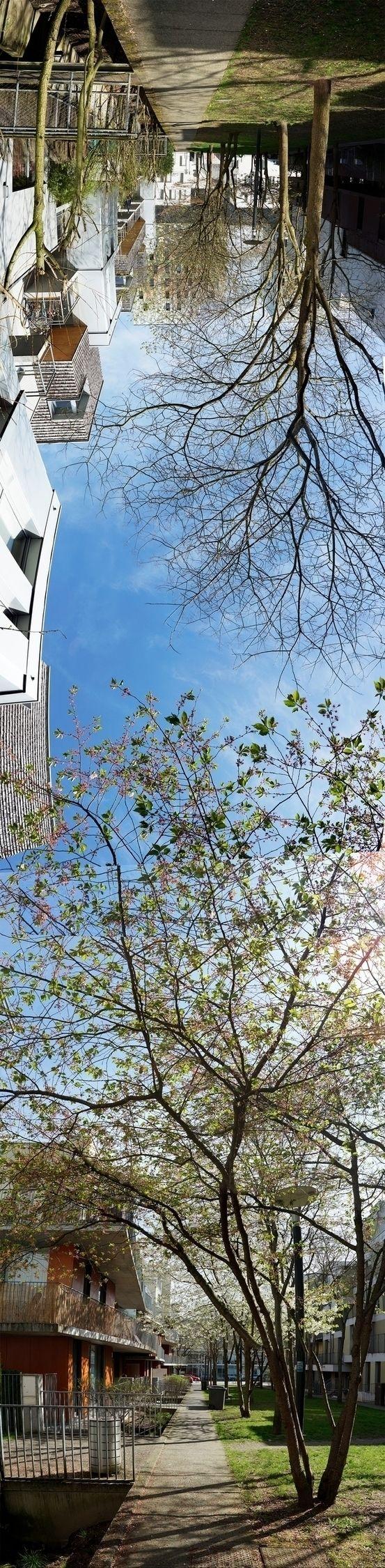 Bois Habité, quartier de Lille - gclavet | ello