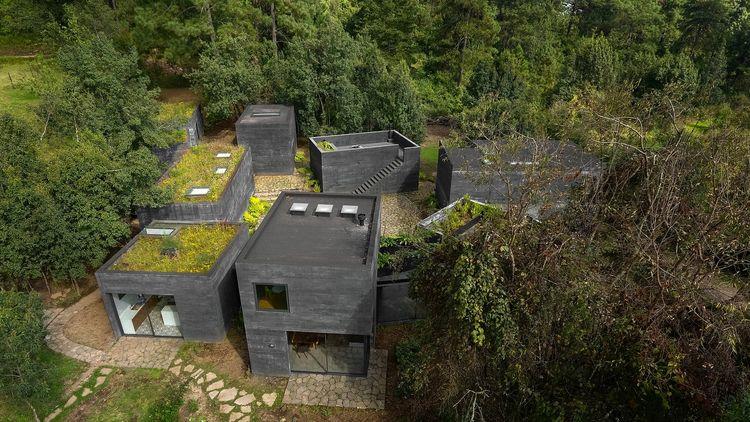 Casa Bruma Fernanda Canales Rea - thetreemag | ello