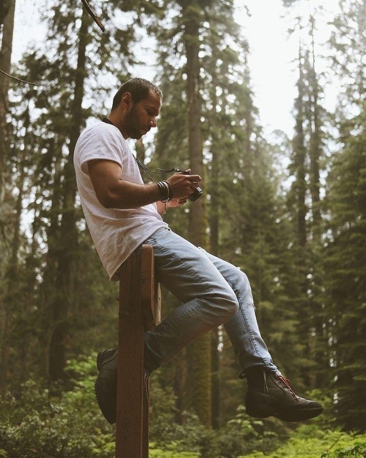 Exploring Nikman - SequoiaNationalPark - jasvisual | ello
