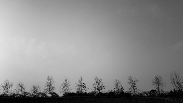 quiet nature - photography, blackandwhite - victorbezrukov | ello