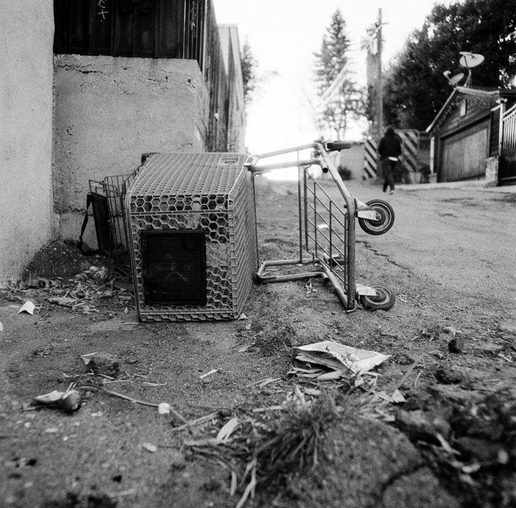Shopping Cart. Echo Park, Los A - johnpike | ello