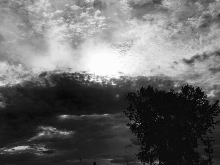 Year Black White June 15, 2018 - eltontaylor | ello