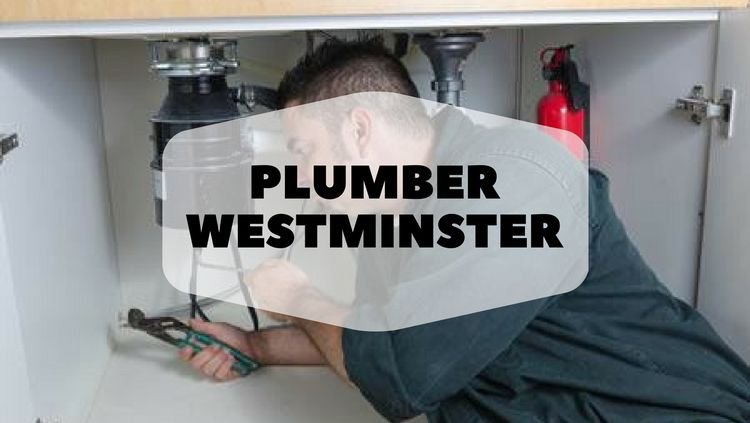 professional Plumber Westminste - rooterheroanaheim | ello