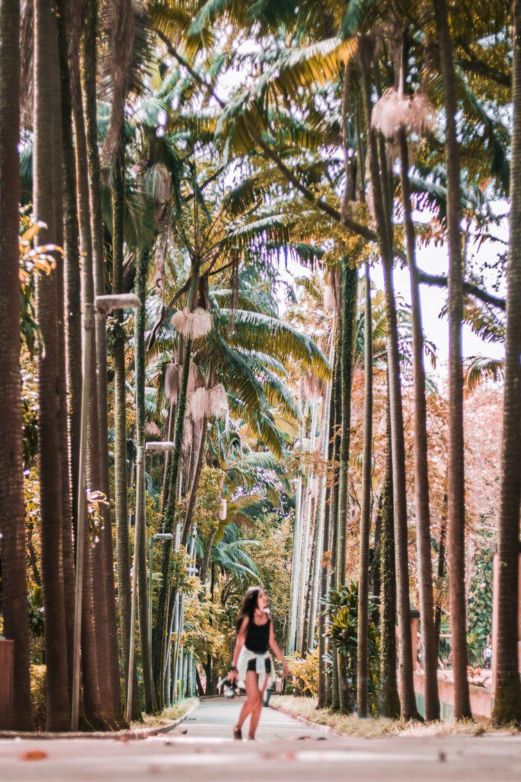 Parque Água Branca | SP 🧚 Natha - vysk | ello