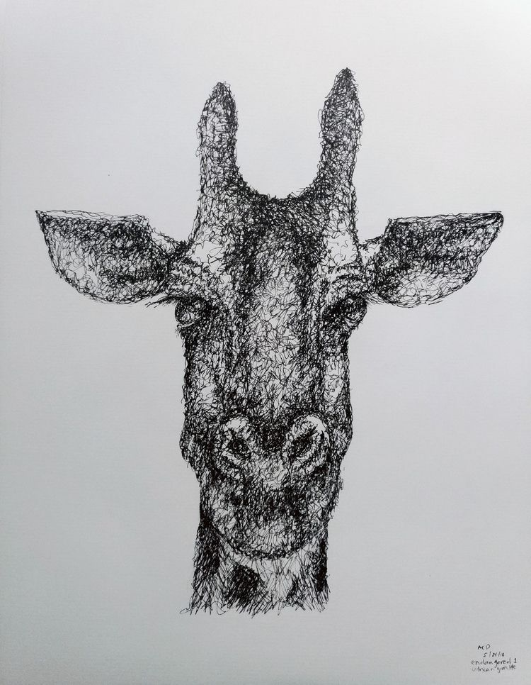 Endangered Series: Giraffe mm M - terry_b | ello