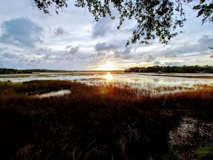 Savannah, Georgia - sunset, marsh - anistie | ello