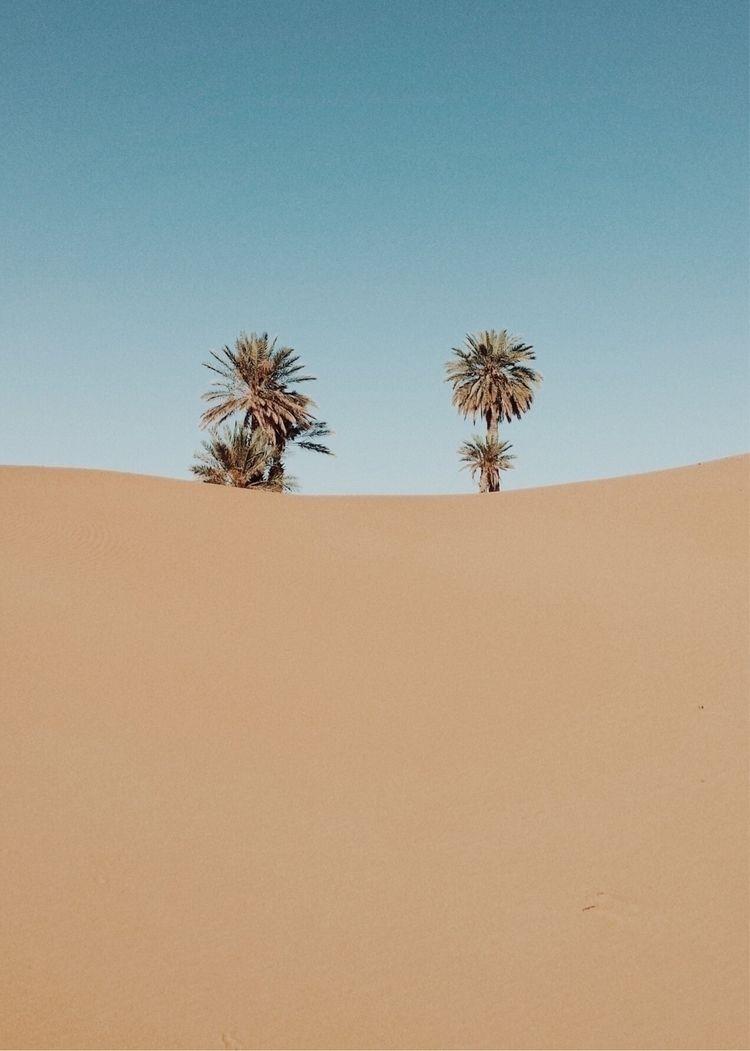 Merzouga - marocco, desert, africa - lapremioqueen | ello
