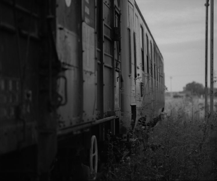 SNCF train maintenance - Train, TrainAbandoned - peterhphotography | ello