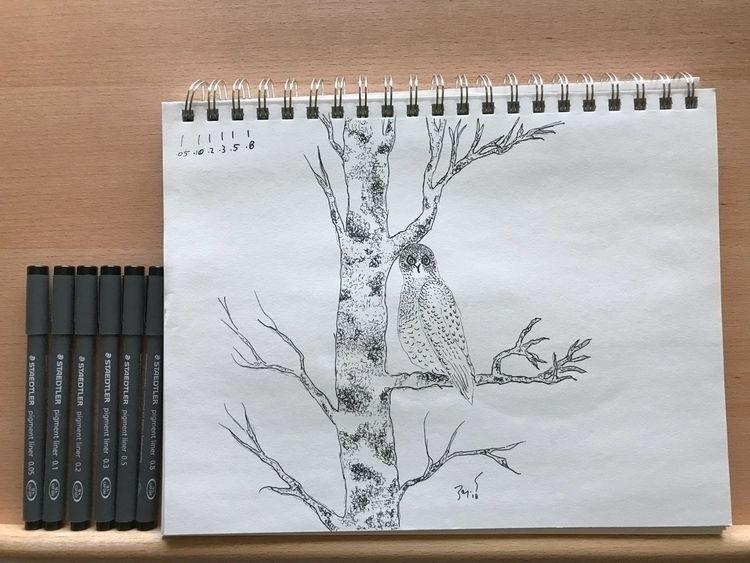 'Staedtler Owl' (2018) Quick re - leapingbluehare | ello