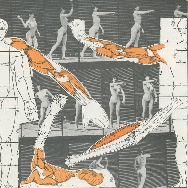 Autonomy / Join Collage Art Dis - alaskapalms | ello