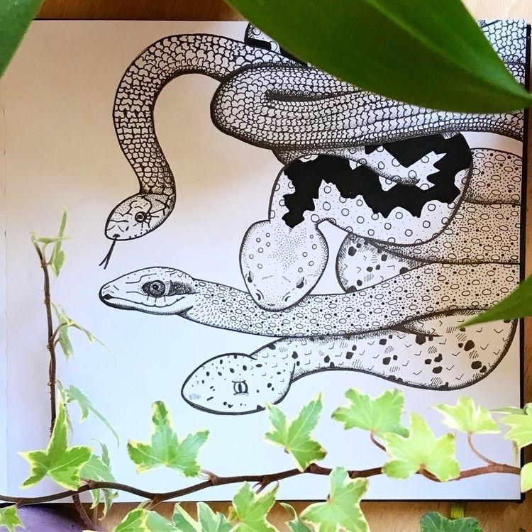 black white pen drawing inspire - sianellis | ello