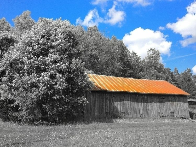 coloursplash, loved rusty roof - samtookthesephotos | ello