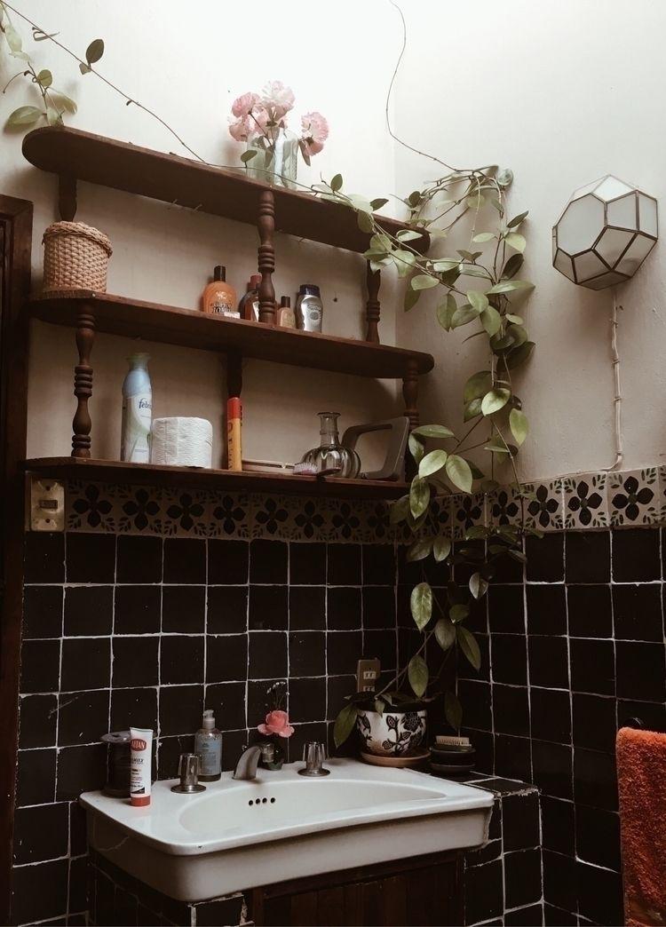 house México - stilllife, stilllifephotography - alexiagarzagomez | ello