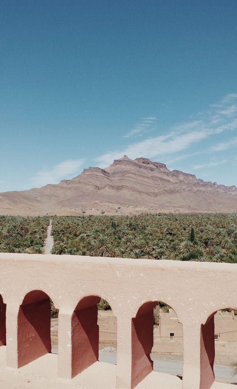 Moroccan oasis - Morocco, Africa - lapremioqueen | ello