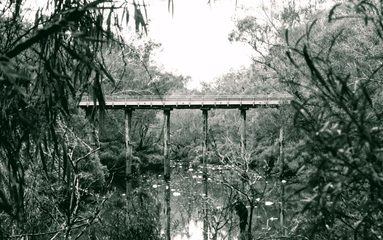 Sues Bridge Western Australia C - lenscapon | ello