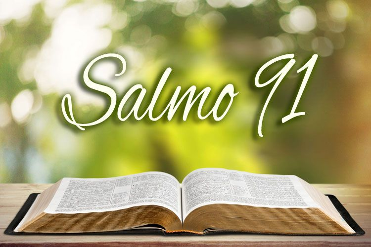 salmo91 Post 02 Jul 2018 13:53:23 UTC | ello