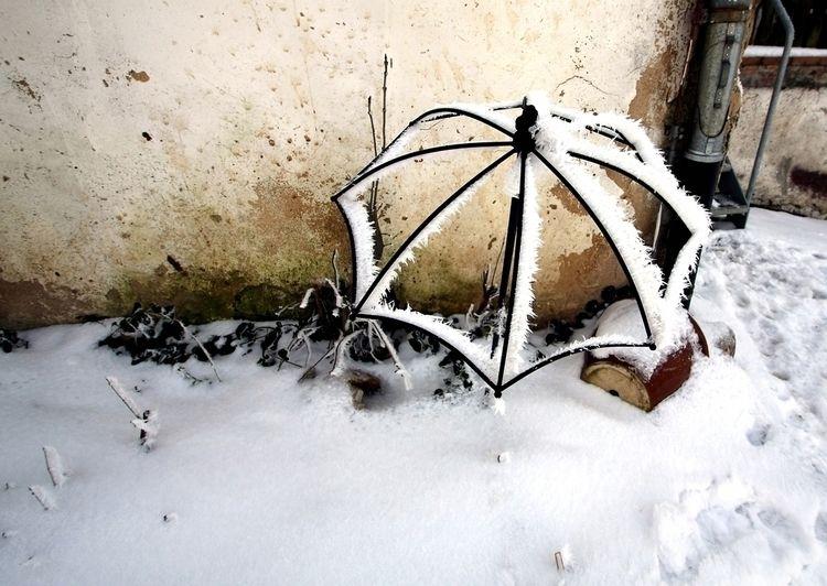 Snowbrella - taiban | ello