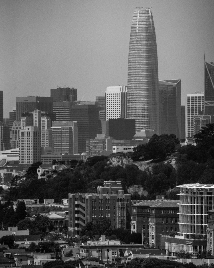 San Francisco California  - california - zwanndnb | ello