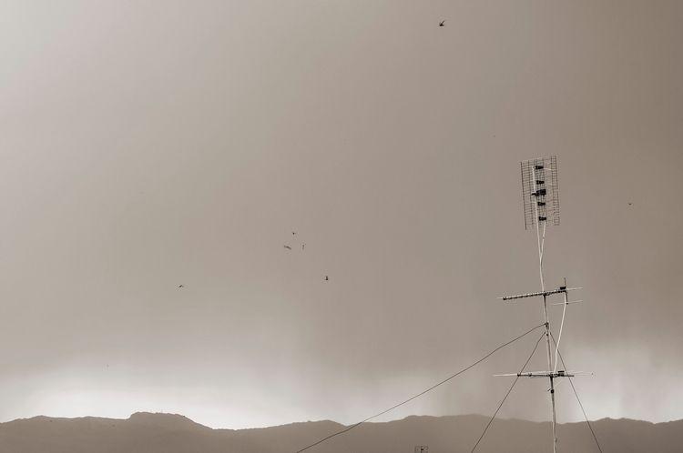 photography, sepia, minimal, sky - shjizadurden | ello
