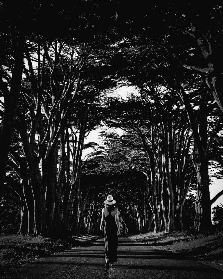 Mother dragons - blackandwhitephotography - thephototypinglife | ello