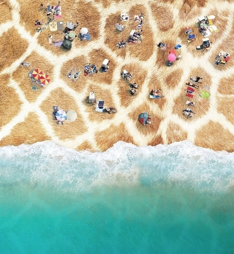 Beach  - beach, summer, digital - tawat | ello