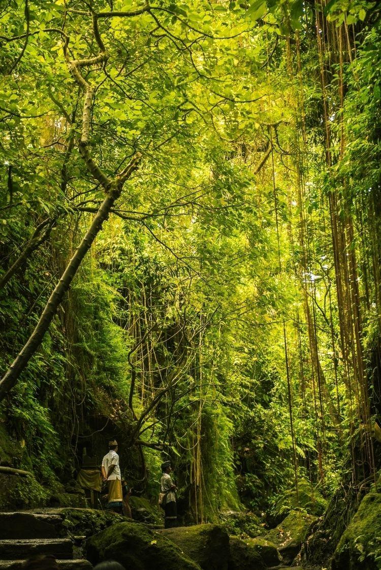 GREEN SOUVENIR BALI Location: M - jbedrovaphotography | ello
