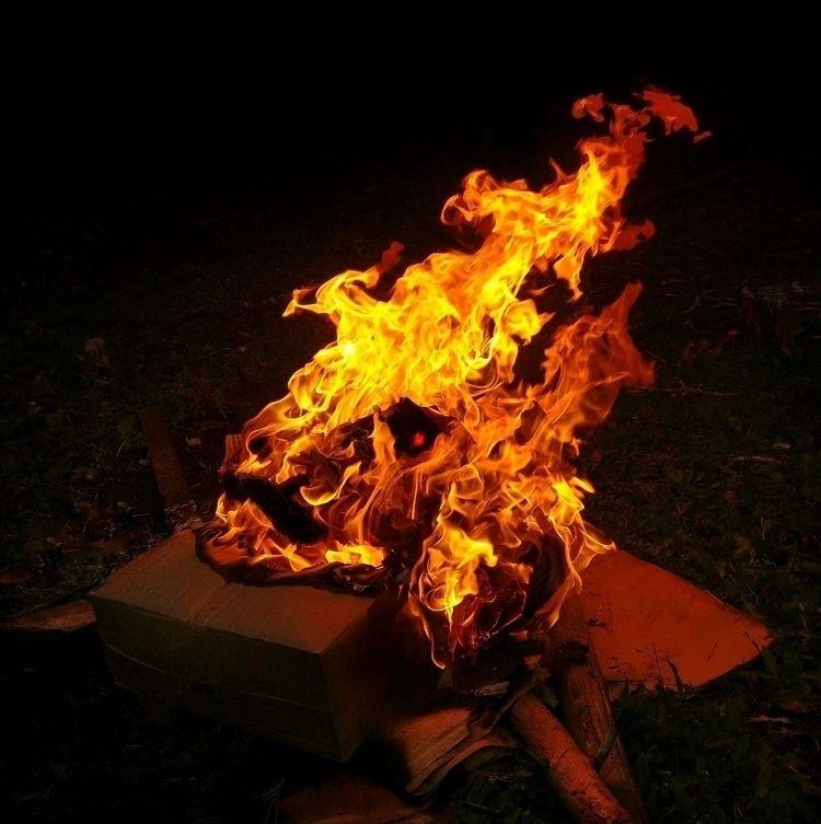 Cardboard Demon - oneplus3t., firephotography - samtookthesephotos | ello