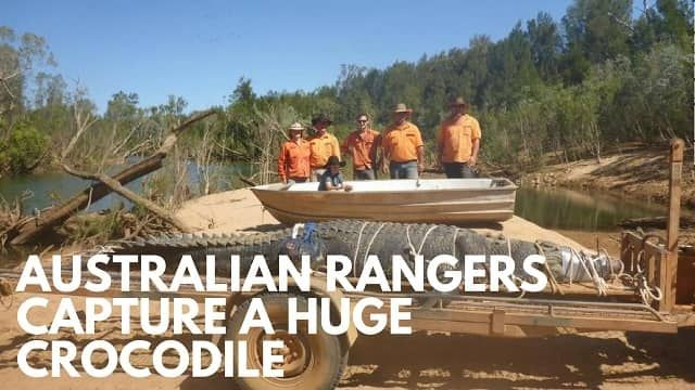 Australian Rangers Capture Huge - ultimatelifestyle | ello