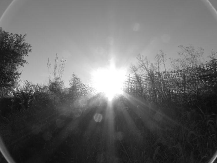 Supernova - photography, streetphotography - futureluddite | ello