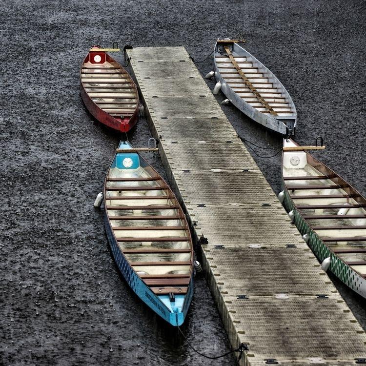 Dragon Boats... heavy rain - dragonboats - jeff_day | ello
