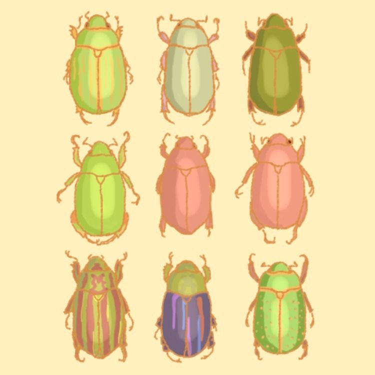 CHRYSINA - illustration, art, doodles - aztunez | ello