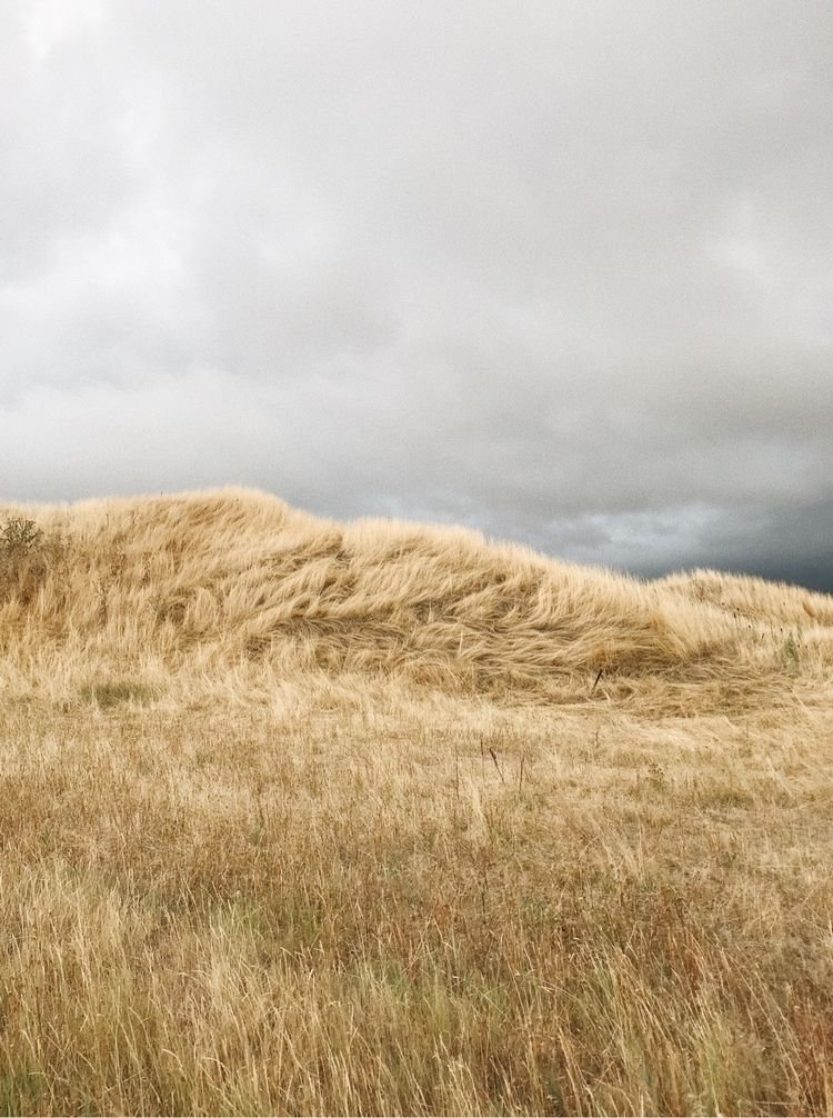 Swept - vsco, landscape, iphone - ncai | ello