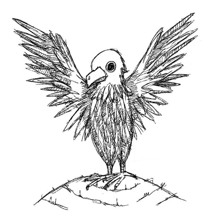 free bird - hawk, hill, spread, wings - catswilleatyou   ello