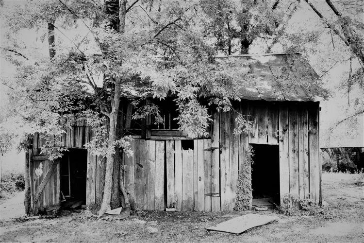 Woodstock - blackandwhite, abandonedplaces - drewsview74   ello