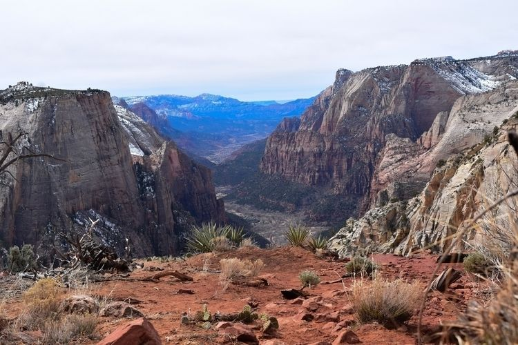 Lunch Observation Point Trail  - alberrrt | ello
