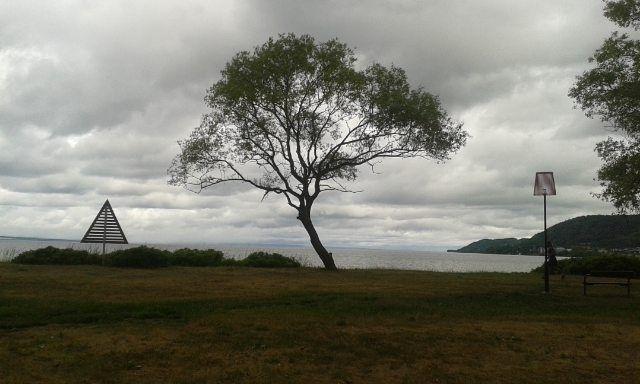 1 Träd söder om vättern betrakt - mellyrn | ello