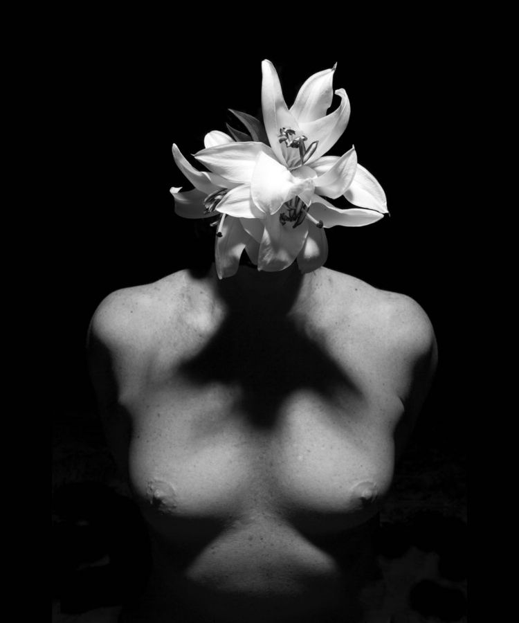 Human Vase, 3 Series 20140505 2 - jsvogt | ello