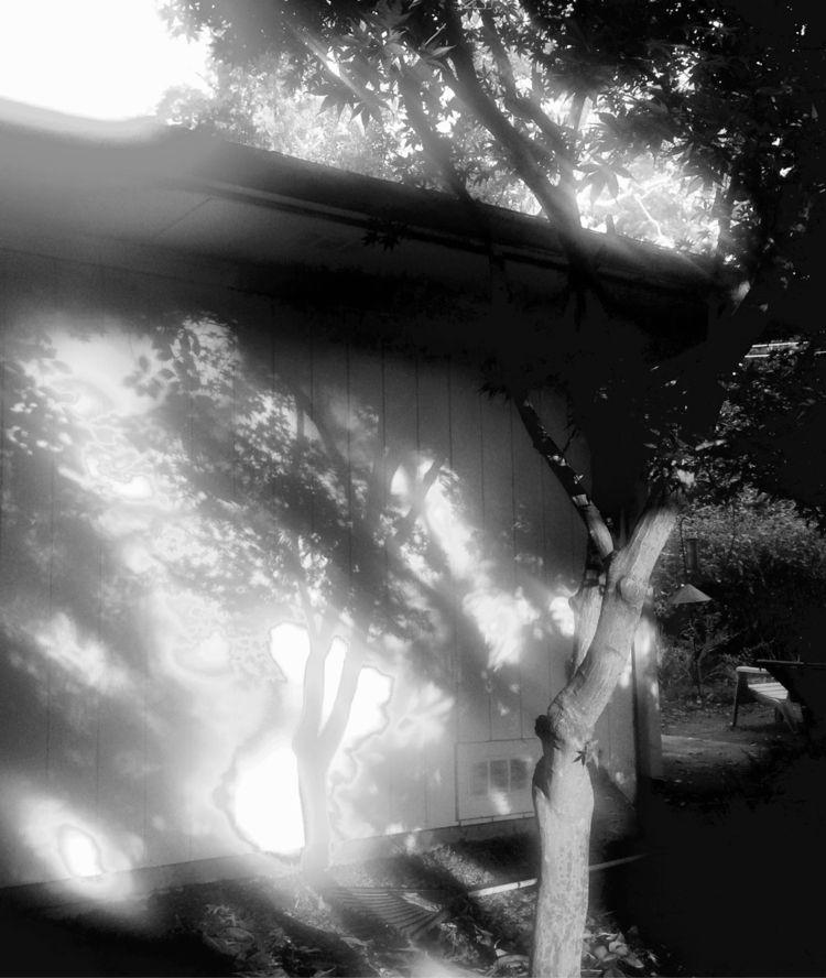 Shadow - blackandwhite, sunlightandshadow - drewsview74 | ello