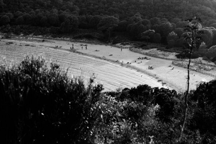 beach, island, corse, wild, sunday - loyph | ello