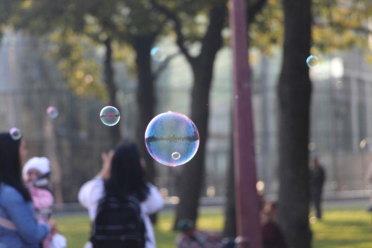 Amsterdam - amsterdam, bubbles, amsterdambubbles - phoenixk | ello