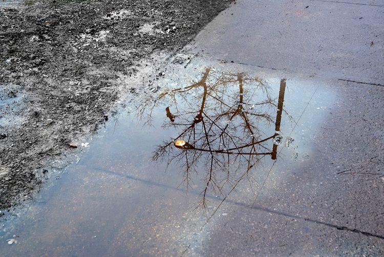 Reflection - photostatguy   ello