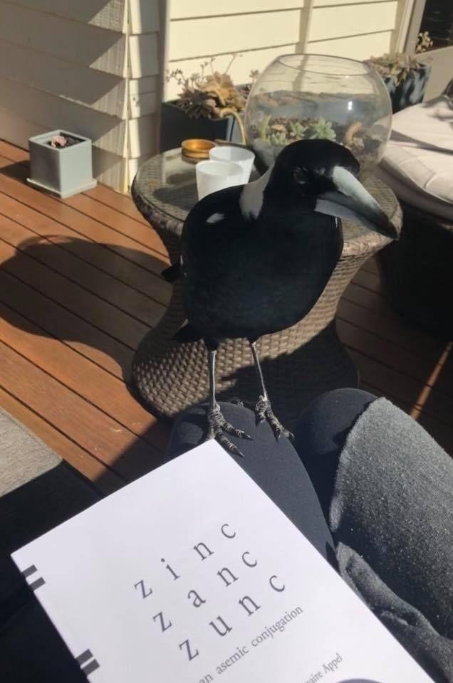 Reading Asemic Writing Zinc Zan - asemicwriter   ello