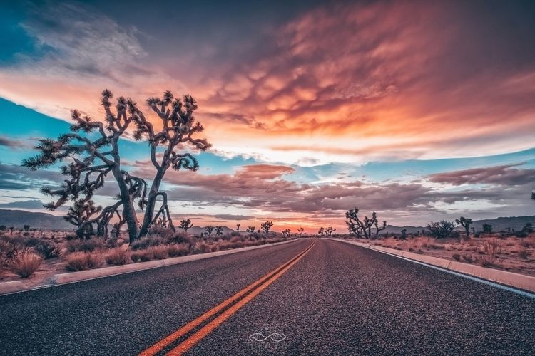 Road Sun Fuji XT2 / XF10-24mm J - thrumyeyesphoto | ello
