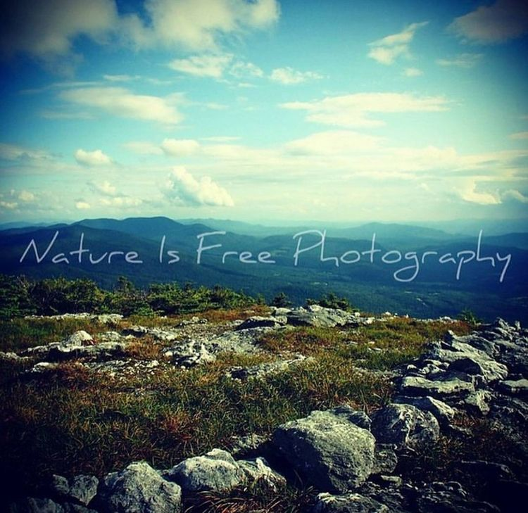 sense solitude experience silen - natureisfree | ello