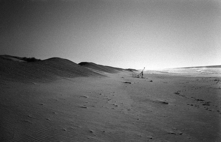LANDSCAPES - analog, filmphotography - simoesimao | ello
