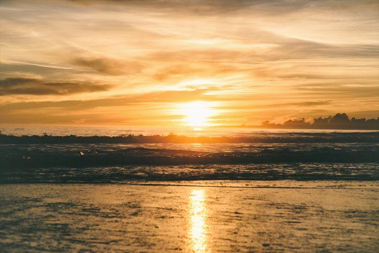 Staring Sun (2017) Santa Cruz,  - neonicecream | ello