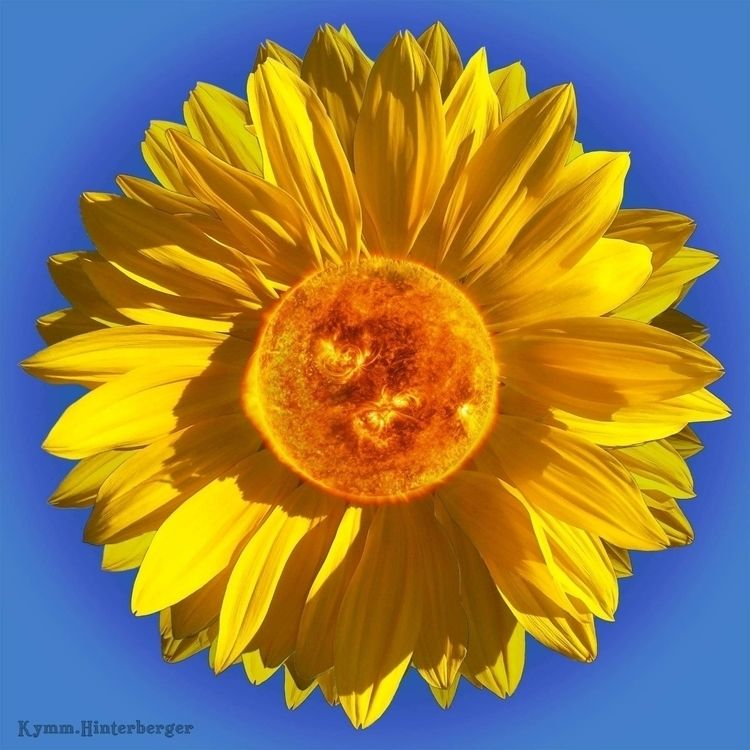 Sun - Flower love NASA images p - inscrutable1 | ello