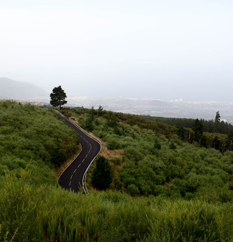 Tenerife - Travel - photo, photos - cristinamolinagerboles | ello